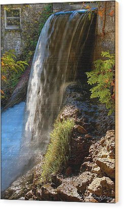 Millcroft Falls Wood Print