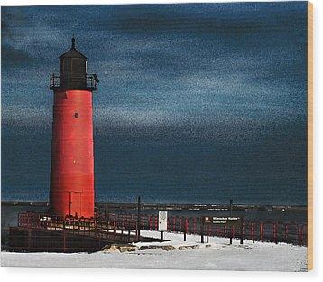 Milwaukee Pierhead Lighthouse Wood Print by David Blank