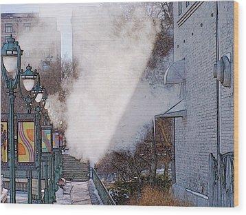 Milwaukee River Walk 1 - Winter 2013 Wood Print