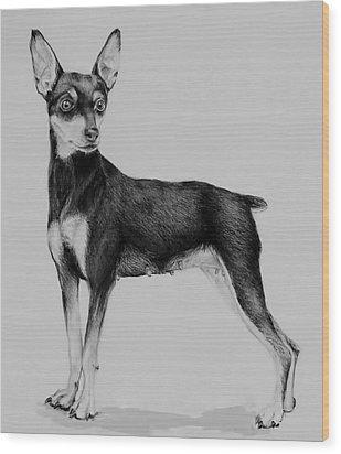 Min Pin Wood Print by Jean Cormier