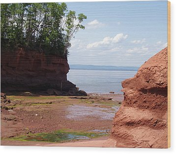 Minas Basin I Wood Print by Brenda Anne Foskett