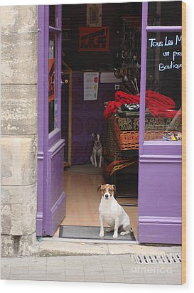 Minding The Shop. Two French Dogs In Boutique Wood Print by Menega Sabidussi