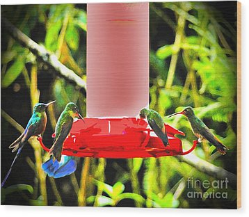 Mindo Hummer Gathering Wood Print by Al Bourassa