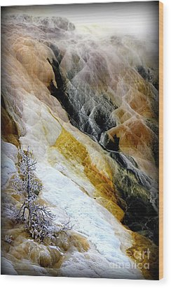 Minerals And Stream Wood Print by C Ray  Roth
