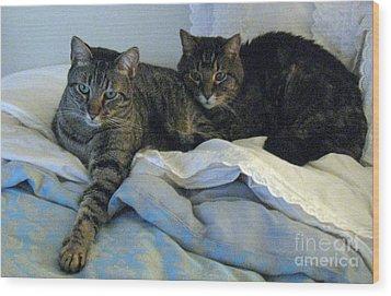 Ming And Sheba Resting  Wood Print