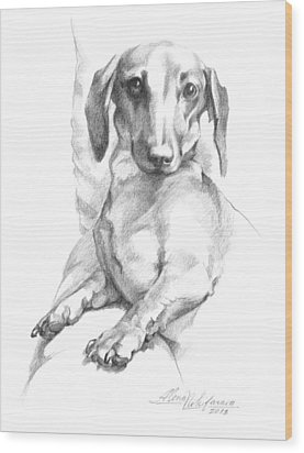 Mini Dachshund Sitting In A Chair Wood Print