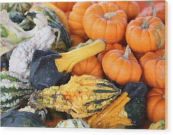 Wood Print featuring the photograph Mini Pumpkins And Gourds by Cynthia Guinn