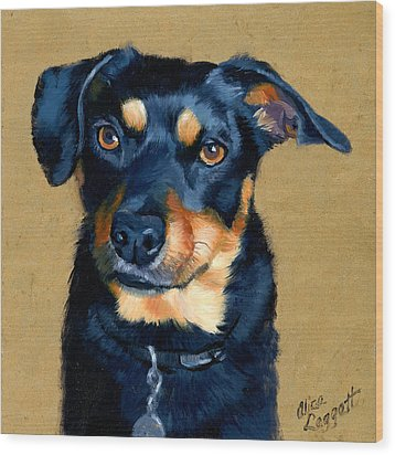 Miniature Pinscher Dog Painting Wood Print by Alice Leggett