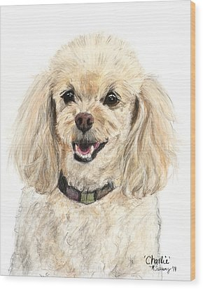 Miniature Poodle Painting Champagne Wood Print by Kate Sumners