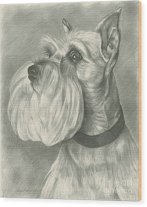 Miniature Schnauzer Wood Print by Lena Auxier