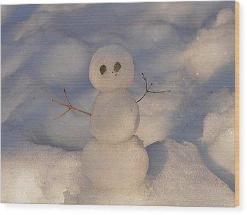 Miniature Snowman Landscape Wood Print by Nancy Landry