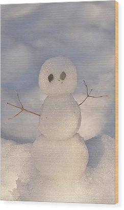 Miniature Snowman Portrait Wood Print by Nancy Landry