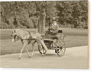 Miniature Two Wheel Cart Wood Print by Wayne Sheeler