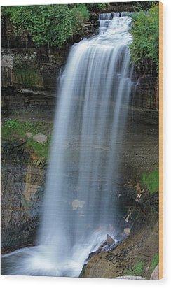 Minnehaha Falls Wood Print by Kristin Elmquist