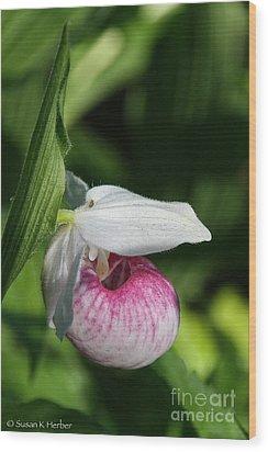 Minnesota's Wild Flower Wood Print
