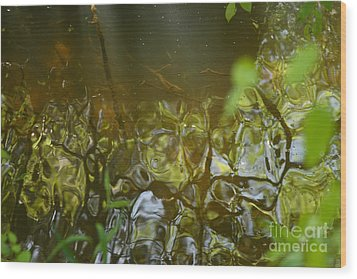 Minnow Creek Wood Print by Russell Christie