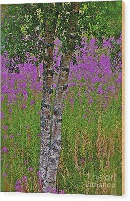Miracles Happen They Do Trondelag - Norway Wood Print by  Andrzej Goszcz