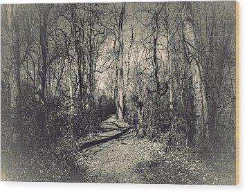 Mirkwood Wood Print by Jessica Brawley