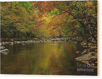 Wood Print featuring the photograph Mirror Fall Stream In The Mountains by Debbie Green