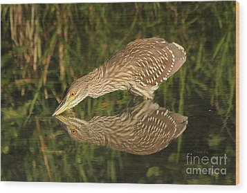 Mirror Mirror On The Wall Who Is The Fairest Heron Of All Wood Print by Heather King