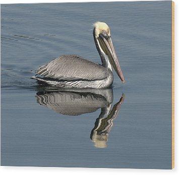 Mirror Pelican Wood Print