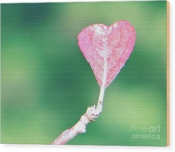 Miss Lonely Heart Wood Print