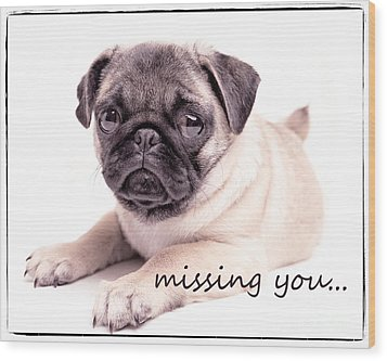 Missing You... Wood Print by Edward Fielding