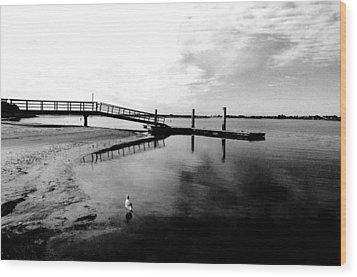 Mission Bay Dock Wood Print