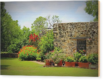 Mission Espada - Garden Wood Print by Beth Vincent
