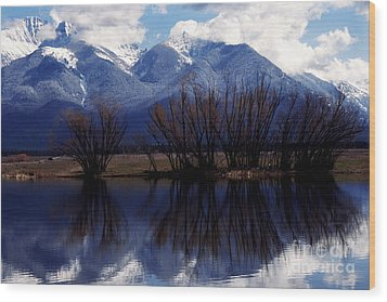 Mission Mountains Montana Wood Print by Thomas R Fletcher