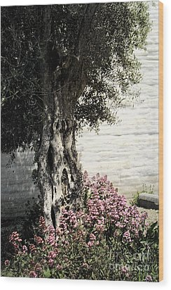 Wood Print featuring the photograph Mission San Jose Tree Dedicated To The Ohlones by Ellen Cotton