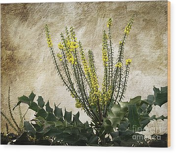 Wood Print featuring the photograph Mission Wallflower by Ellen Cotton