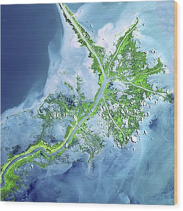 Mississippi River Delta Wood Print by Adam Romanowicz