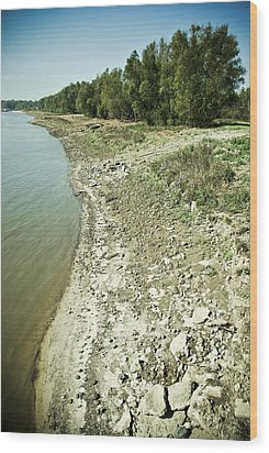 Wood Print featuring the photograph Mississippi River In Louisiana by Ray Devlin