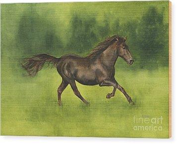 Missouri Fox Trotter Horse Wood Print by Nan Wright