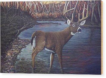 Missouri Morning Wood Print by Dan Parsons
