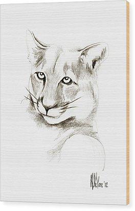 Missouri Mountain Lion II Wood Print by Kip DeVore
