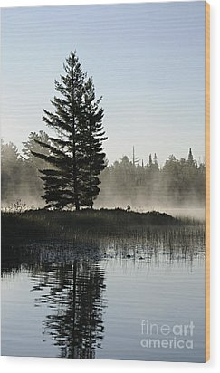 Mist And Silhouette Wood Print by Larry Ricker