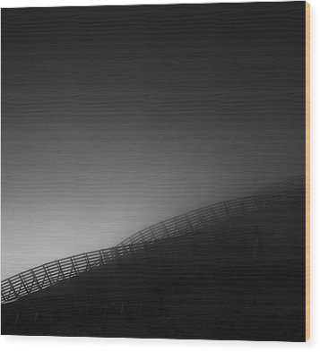 Wood Print featuring the photograph Mist by Frodi Brinks