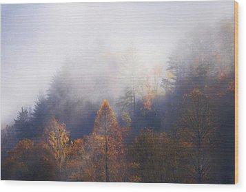 Mist In Mountains Wood Print by Dorothy Walker