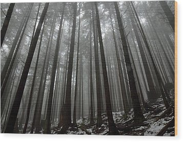Mist In The Woods Wood Print by Kathy King