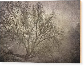 Mist Tree Wood Print by Guido Montanes Castillo