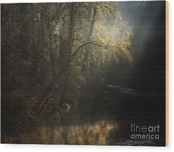 Wood Print featuring the photograph Misty Creek by Inge Riis McDonald