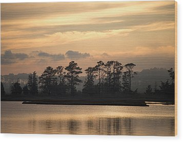 Misty Island Of Assawoman Bay Wood Print by Bill Swartwout