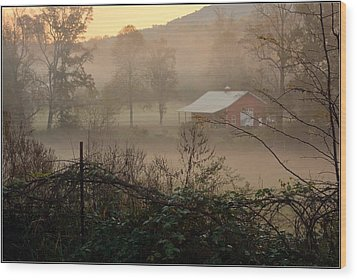 Misty Morn And Horse Wood Print