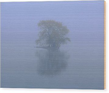 Misty Morning At Jamaica Pond Wood Print by Juergen Roth
