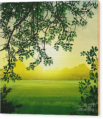 Misty Morning Wood Print by Peter Awax