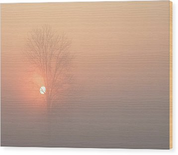 Wood Print featuring the photograph Misty Morning by Carlee Ojeda