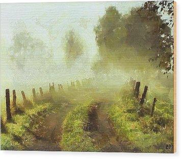 Misty Morning Wood Print by Gun Legler