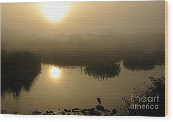 Misty Morning In The Marsh Wood Print by Nancy Greenland